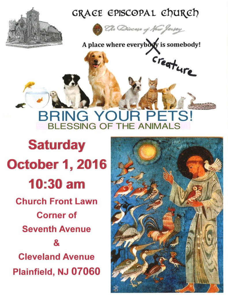 Blessing of Animals 2016